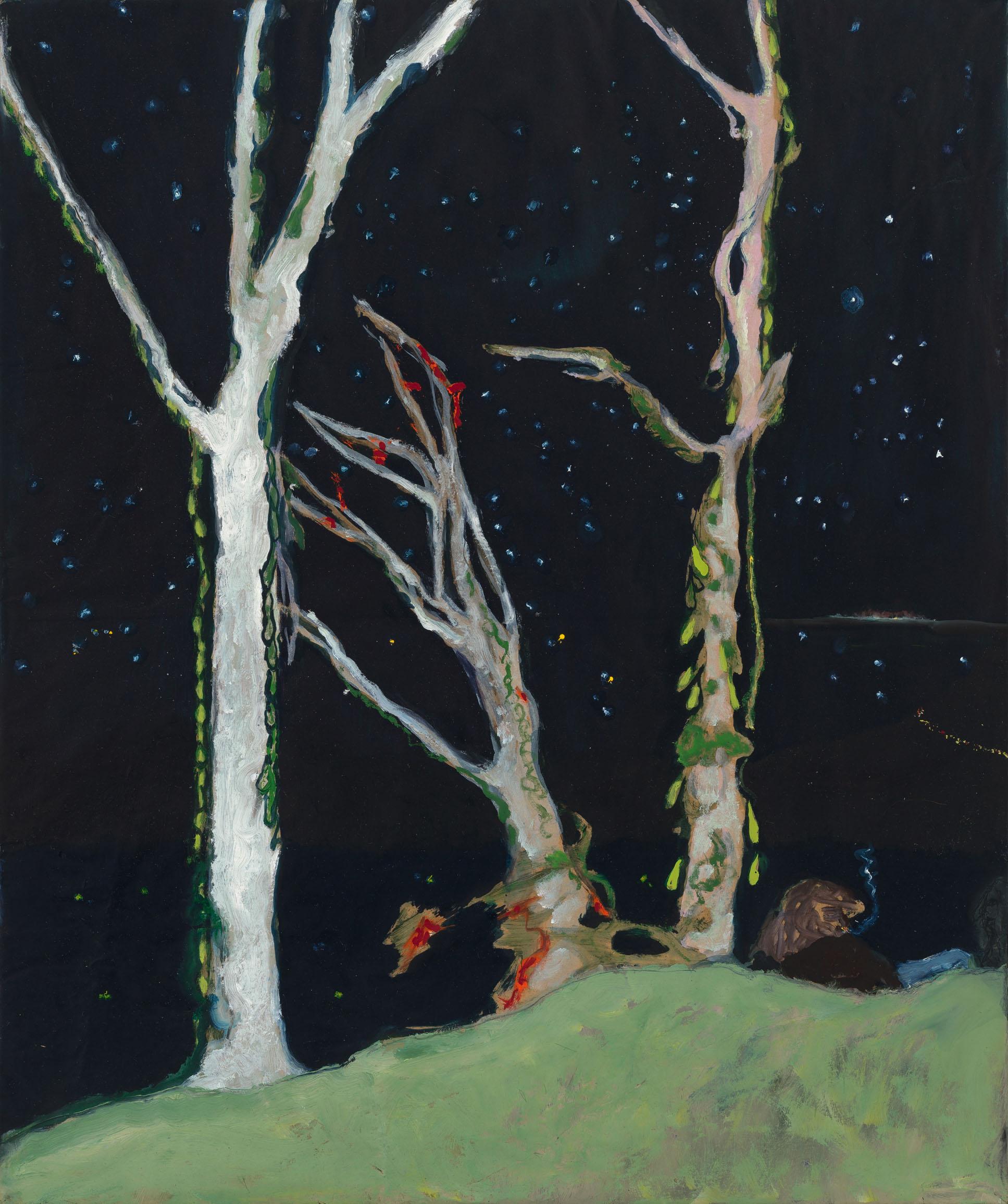Peter Doig Werke